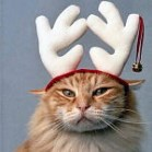 navidad-gato-reno.jpg